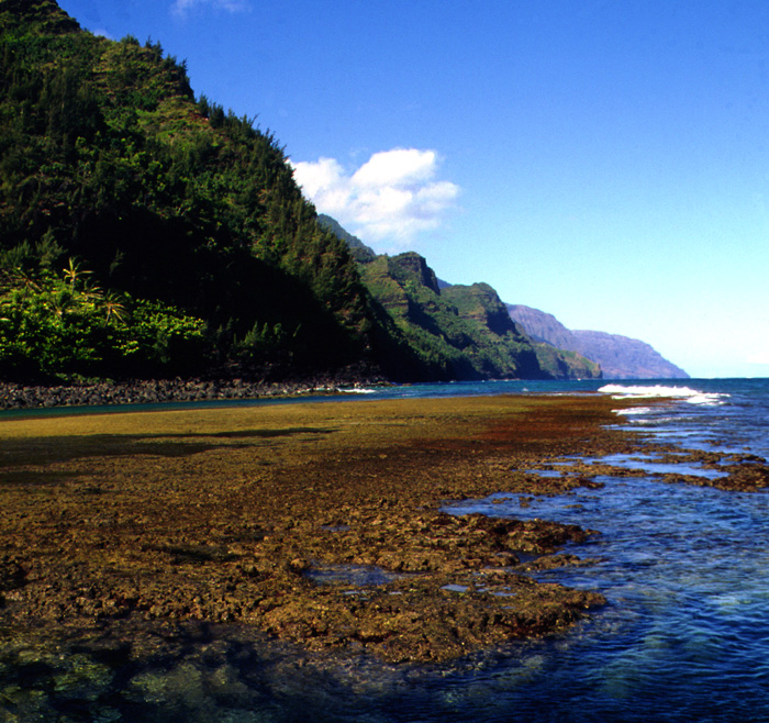 Kee-NaPali-Reef